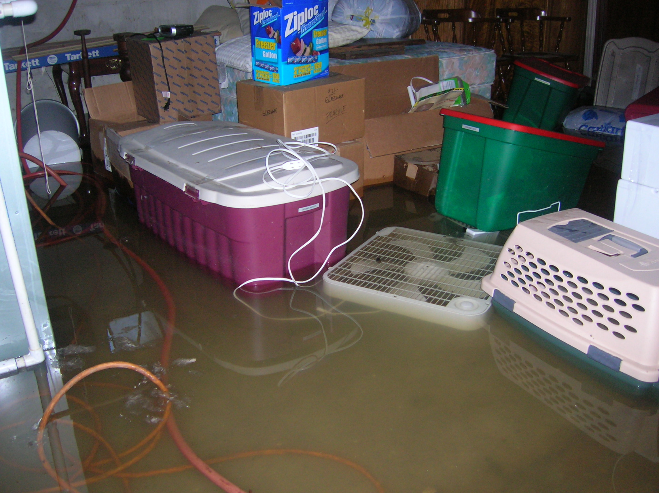 Oh No The Basement Is Flooded Don T Get Electrocuted